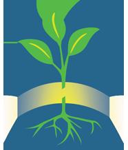 Grafting portal logo