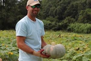 freeman pumpkin 1-2